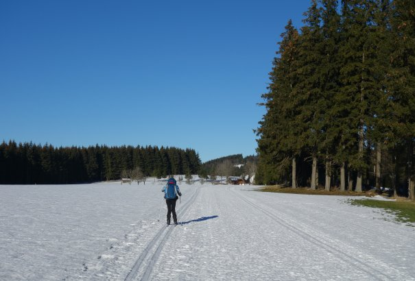 LaRébenne - Ski de fond - La Forêt Noire