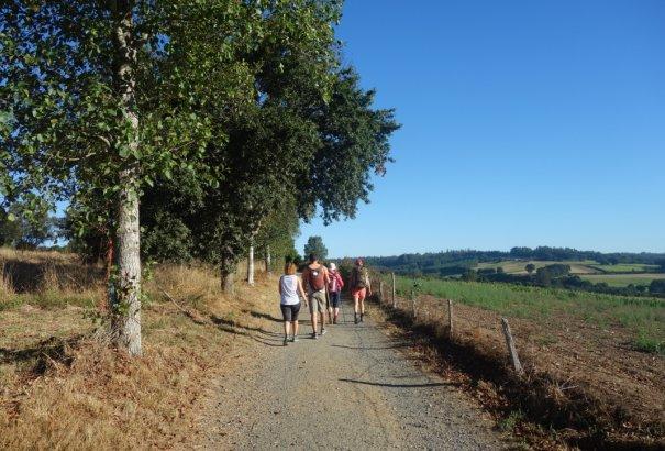 LaRébenne - Randonnée - Chemin de Compostelle - De Leon à Santiago de Compostella (étape 10)
