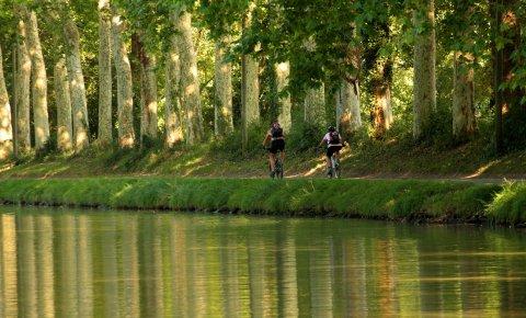 LaRébenne - Le Canal du Midi à Vélo Haut de Gamme - Bord de Canal