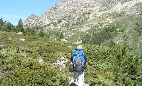 LaRébenne - Randonnée - Chemin des Bonshommes (Campcardos)