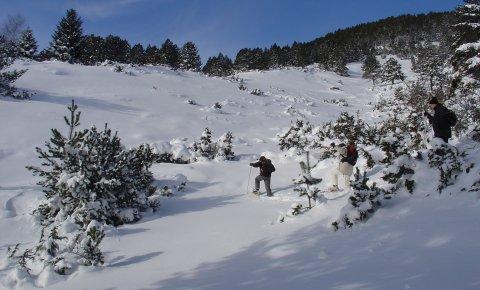 LaRébenne - Raquettes à neige - Haute-Ariège