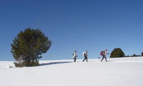 LaRébenne - Raquettes à Neige - Balnéo et plaisirs gourmands