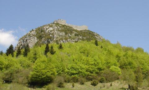 LaRébenne - Randonnée - le Sentier Cathare (Montségur)