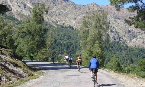 LaRébenne - Vélo - Le Tour de Corse