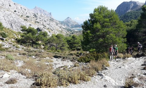 LaRébenne - Randonnée - Majorque, la Traversée de la Serra de Tramuntana